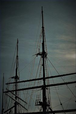 elisa ship