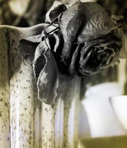 Flowers well kept