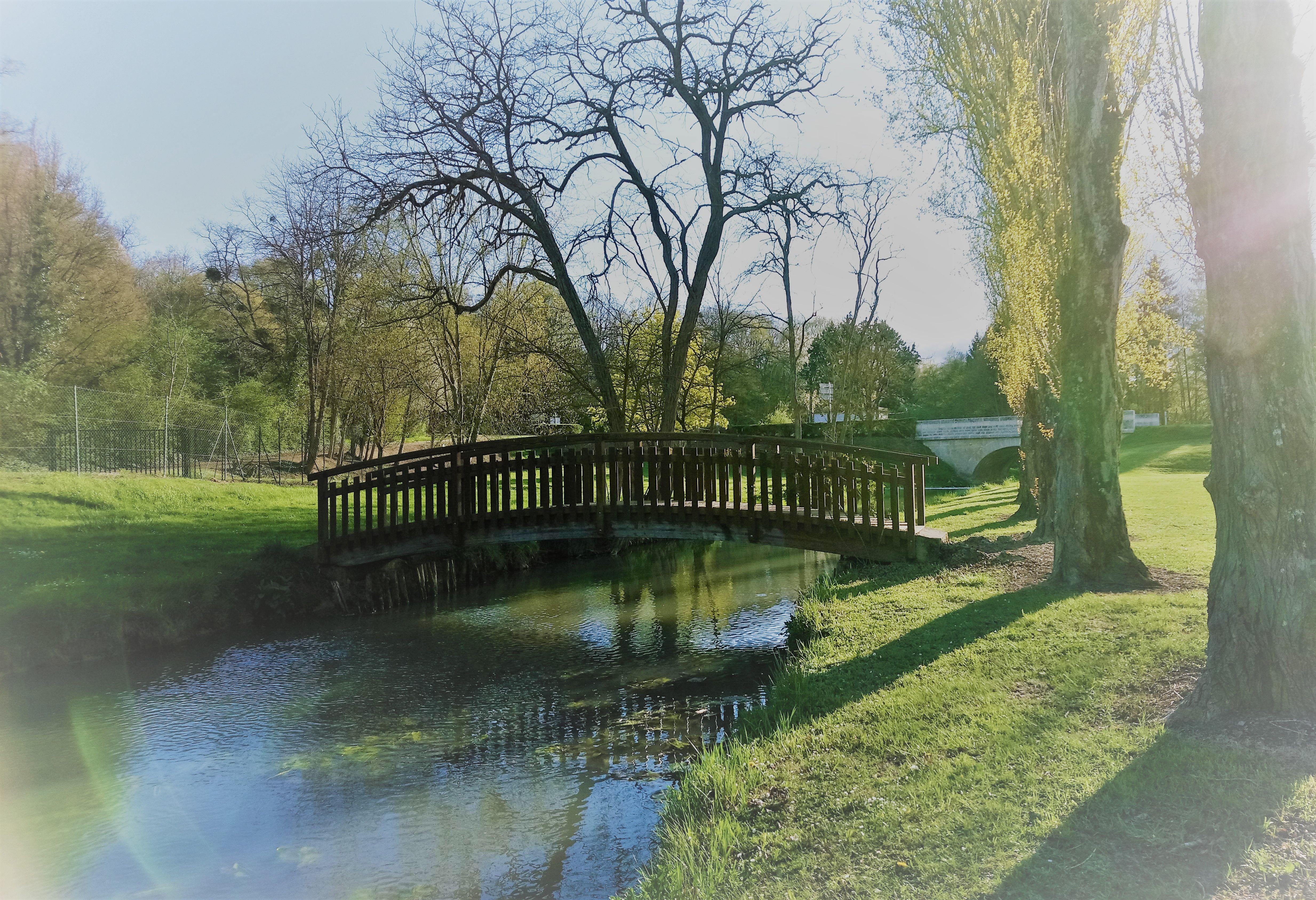 Le-Brignon-nature-promenade-le-long-de-l