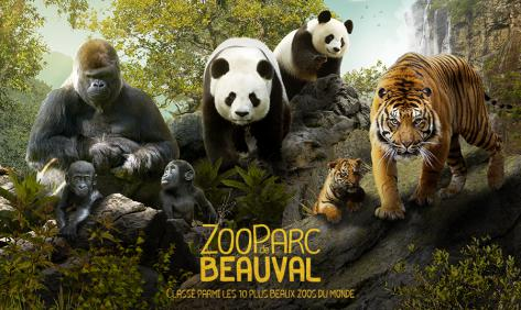 zooparcdebeauval_