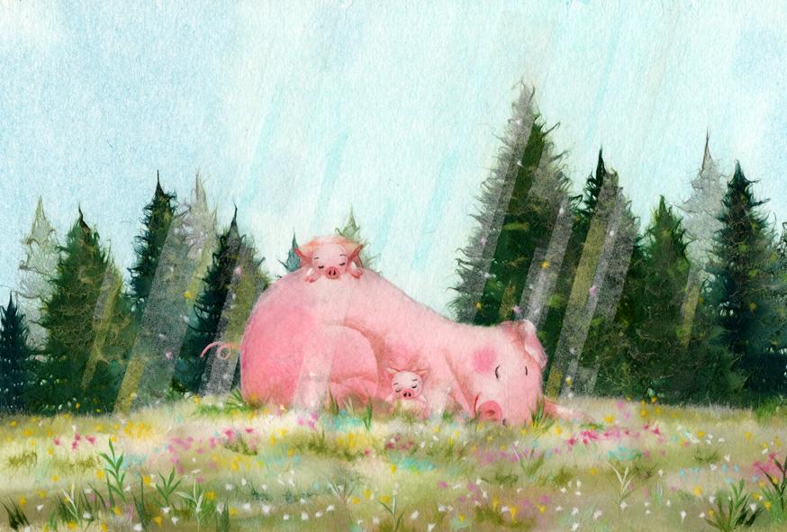豚さんのお昼寝