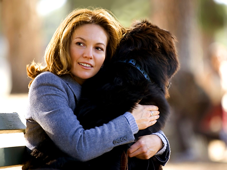 Must Love Dogs Diane Lane