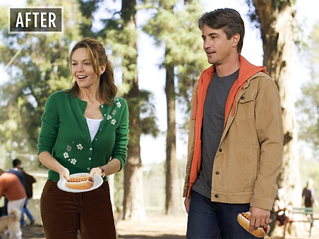 Must Love Hotdogs Durmot Mulroney Diane Lane