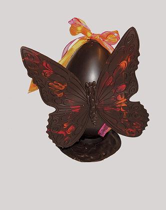 L'oeuf papillon
