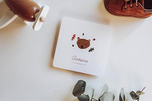Ourson - Faire-Part de Naissance minimaliste avec illustration