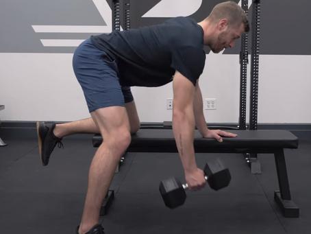 Dumbbell One-Arm Row (Upper Back, Biceps)