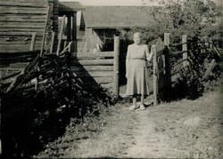 Aholan täti naapurista