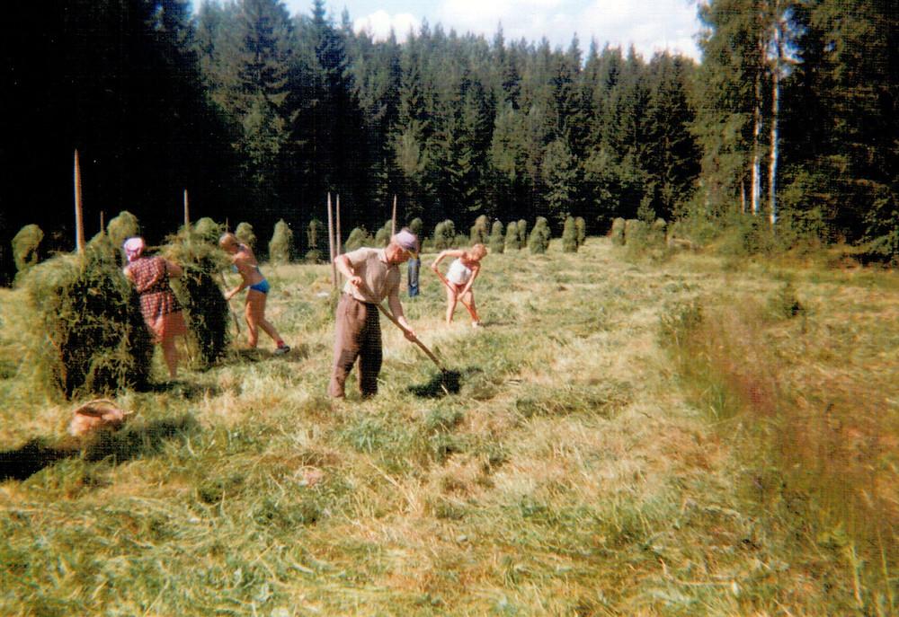 Römmilän heinäpellolla 1970-luvulla.