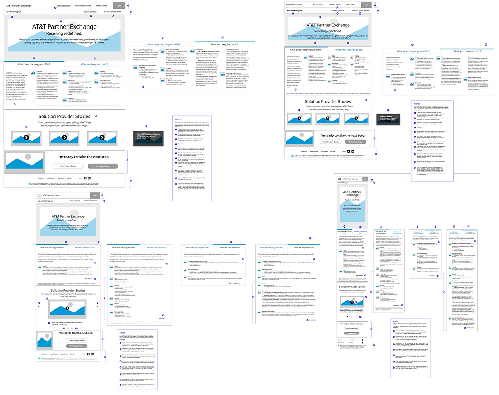 TheProgramPage-Wireframes.png