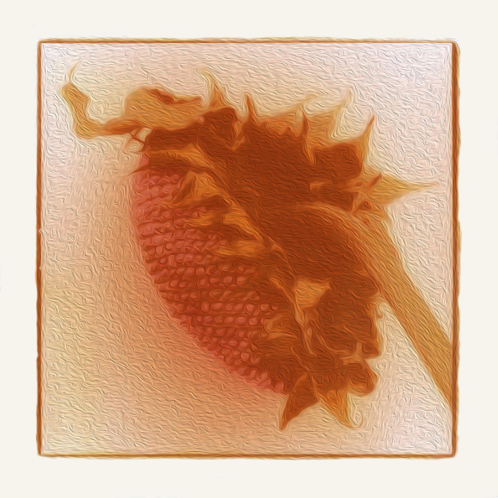 Sunflower-Edit