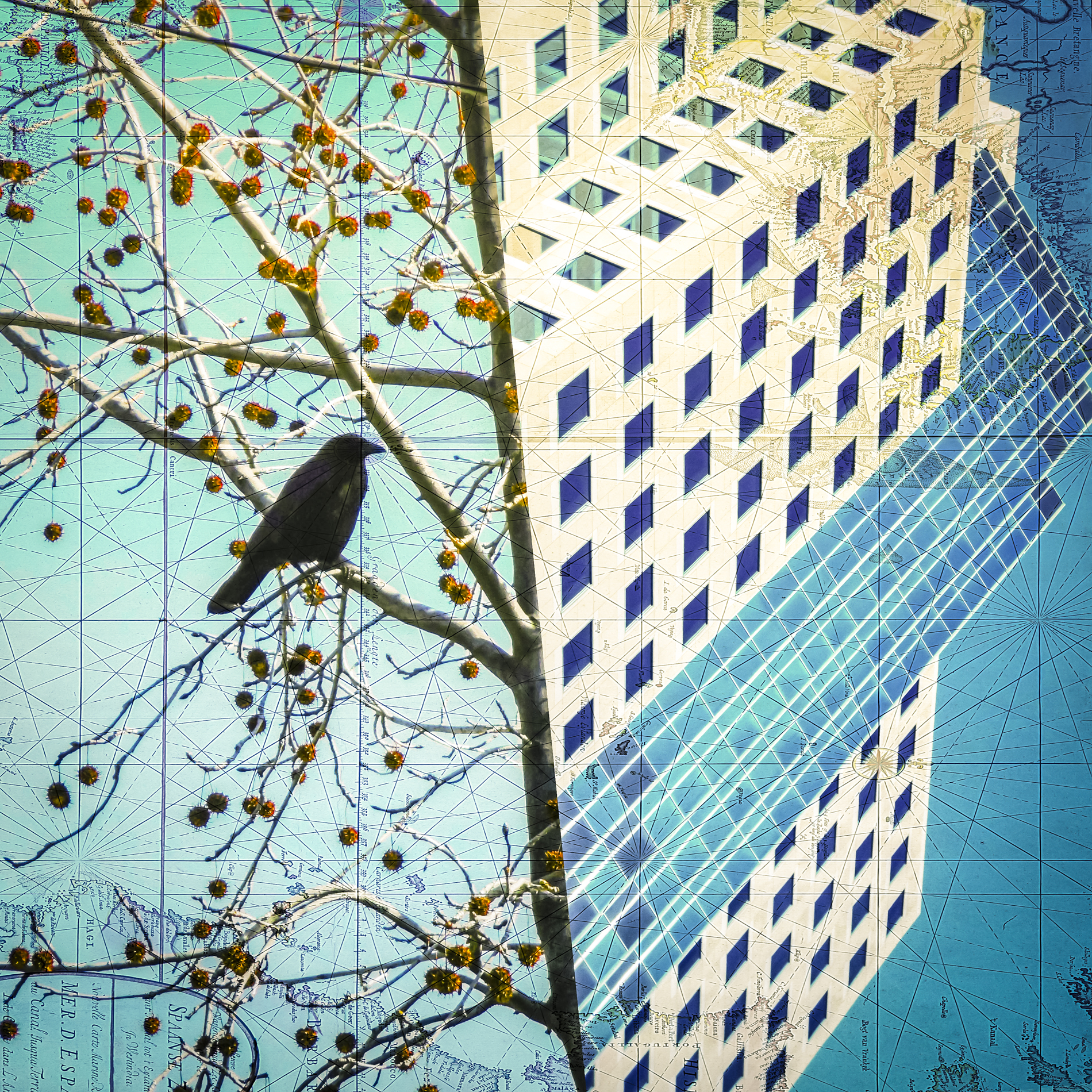 Crow Architecture_Bruce Burr - 1900x72pp