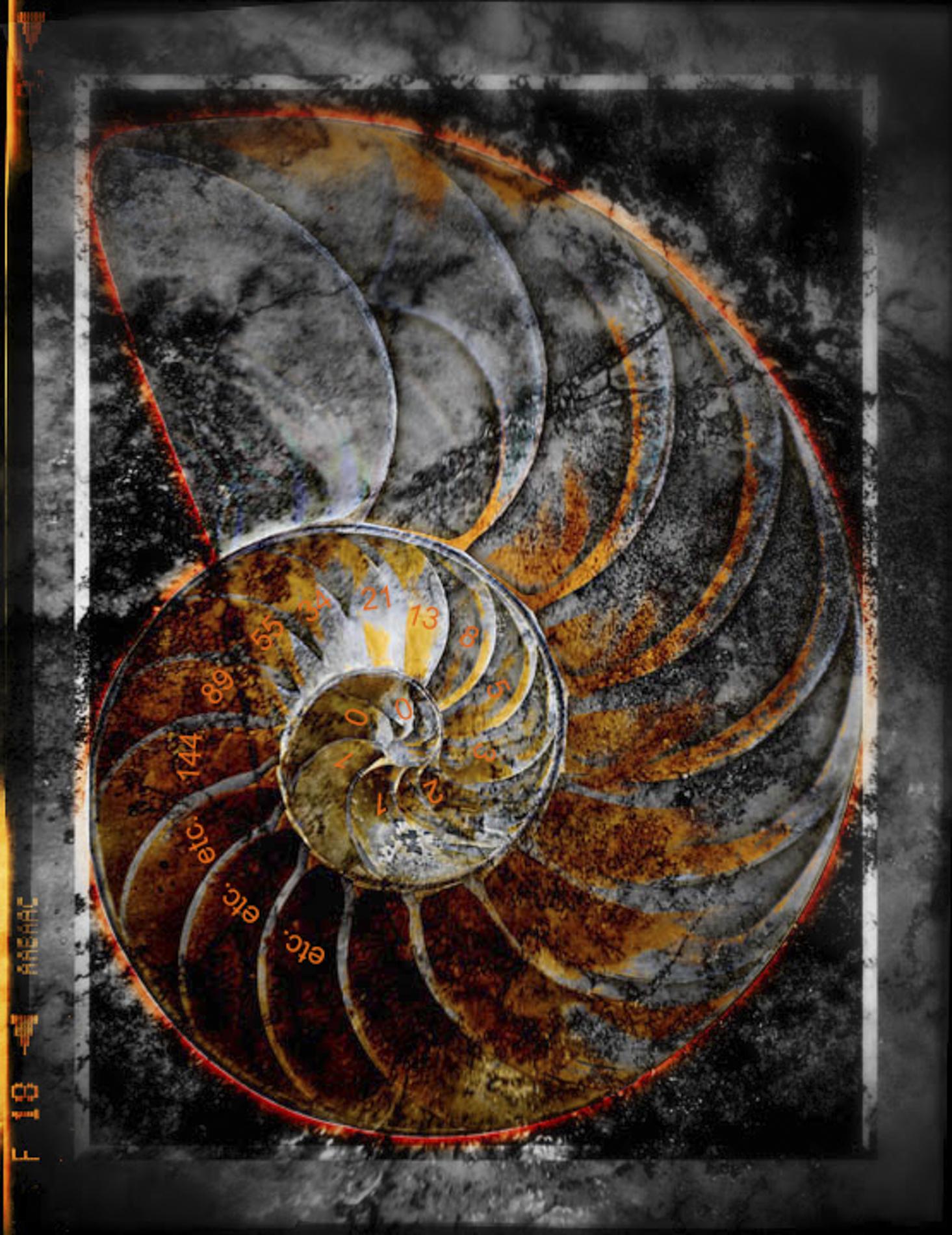 Fibonacci ad Infinitum_v3