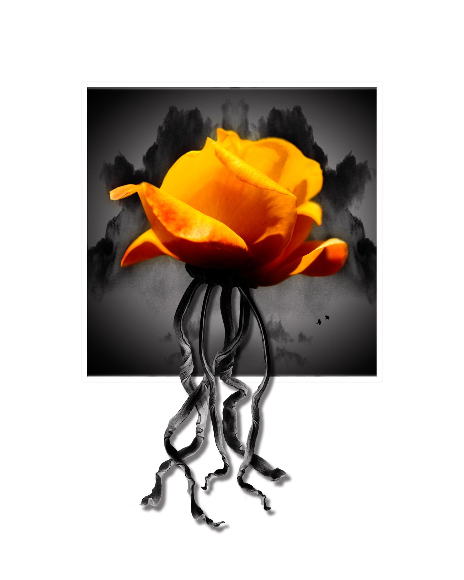 Rose Electric