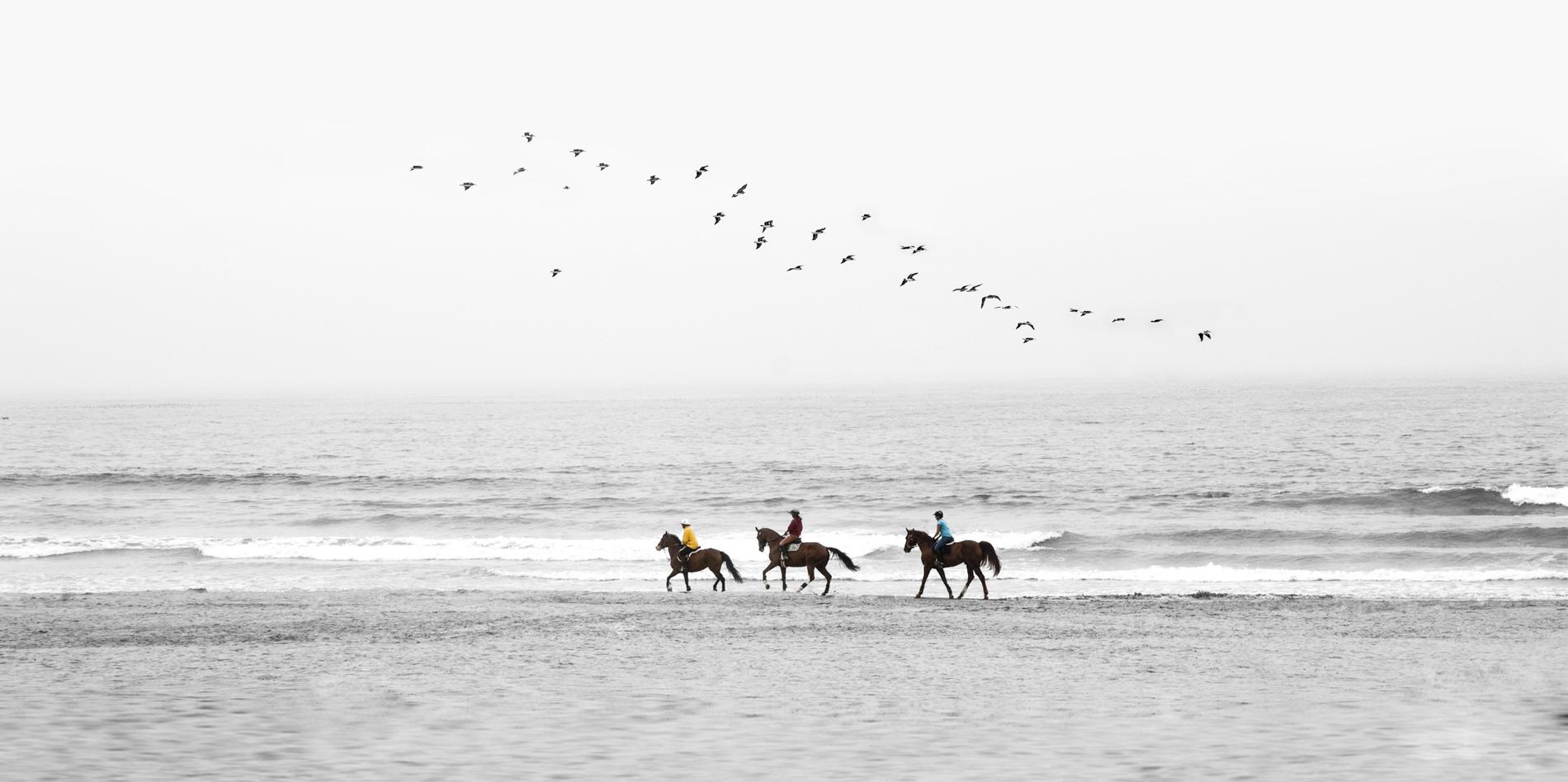 Sand Riders B&W
