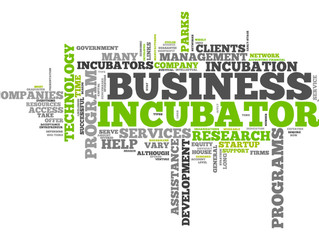 Tampa Bay's sudden boom in business incubators: Good for startups, or pop trend?