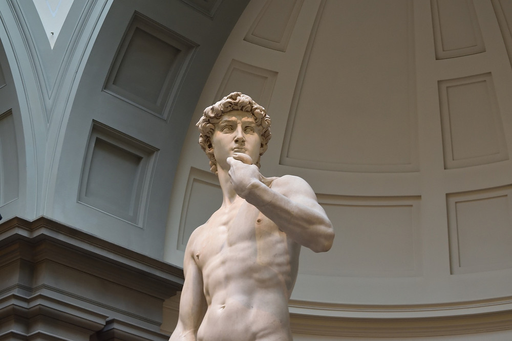 Statue of David, Florence, Italy Funny 1-Star reviews