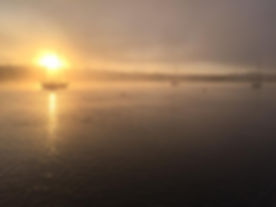 cruisers early morning.jpg