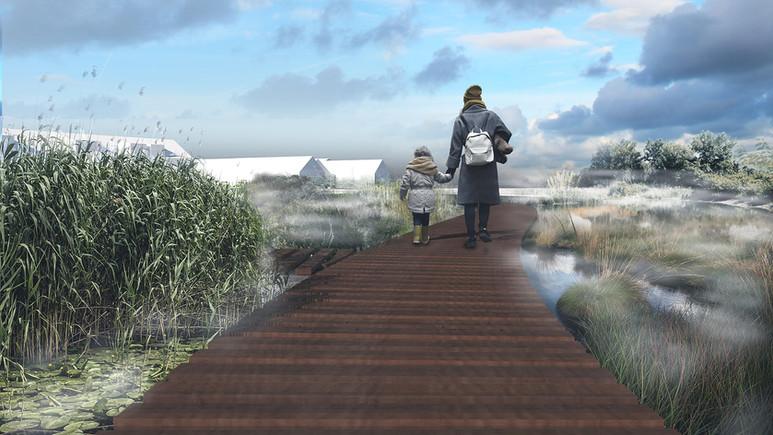 A path through the wetlands