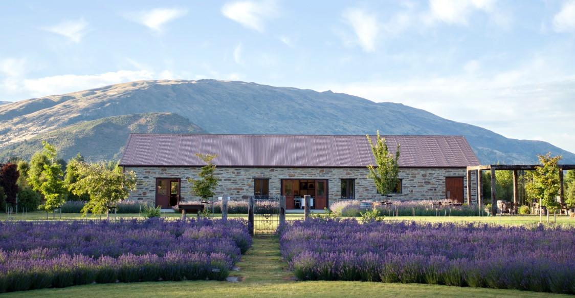Lavender and Honey Products   Wanaka   Wanaka Lavender Farm