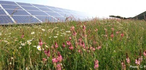 Solar Sanctuaries