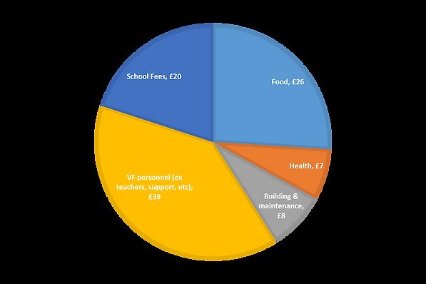 The usage split of the raised money