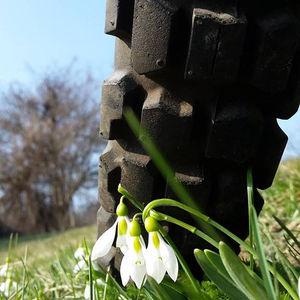 Graham Field: Seasons to be cheerful