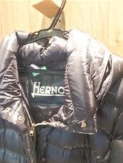 ヘルノ ダウンジャケット クリーニング画像