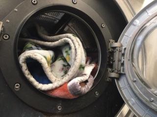 羽毛布団クリーニング洗浄画像