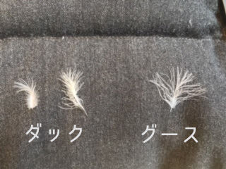 マザーグースダウンとダックダウンの羽の保温力の比較画像