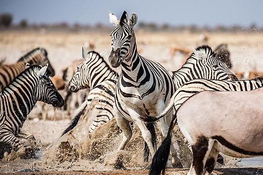 Afrika-365.jpg