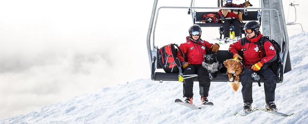 ski-patrol-dogs.jpg