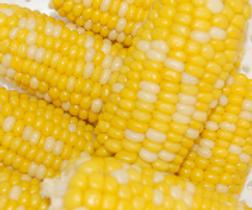 corncob.png