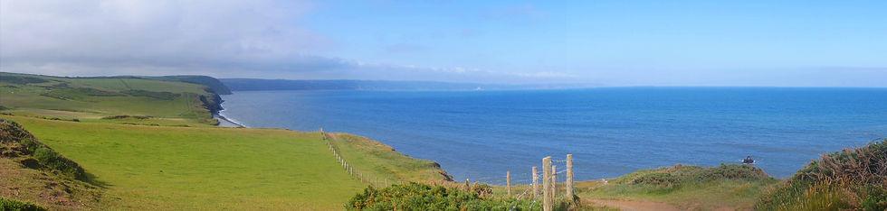 Abbotsham cliffs web.jpg