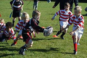 Tag Rugby website.jpg