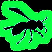 WASP1111.png