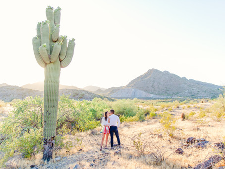 Meredith + Ryan's Colorful Desert Engagement