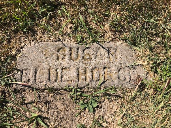 Susan Blue Horse