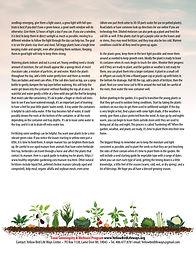 Seed-Starting-Guide-2.jpg