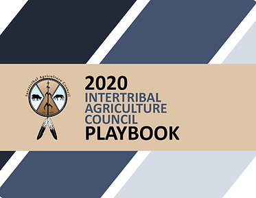 2020 IAC Playbook-1.png
