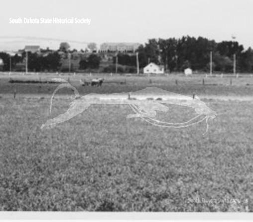 Ball Field View.jpg