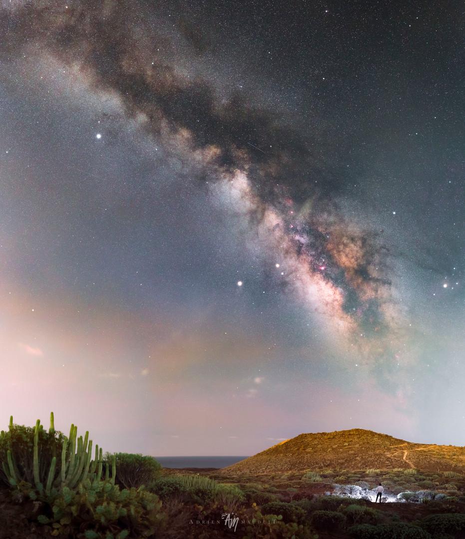 Cactus plains of Tenerife