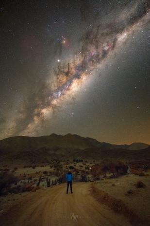 Alone on Mars V
