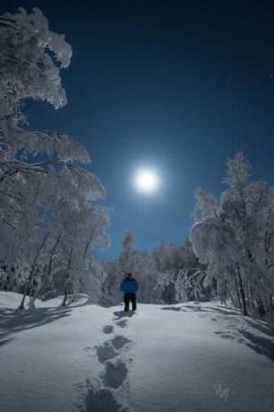 Winter wonderland V