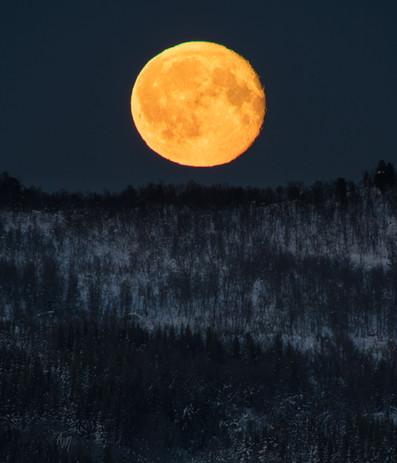 Senja full moon I