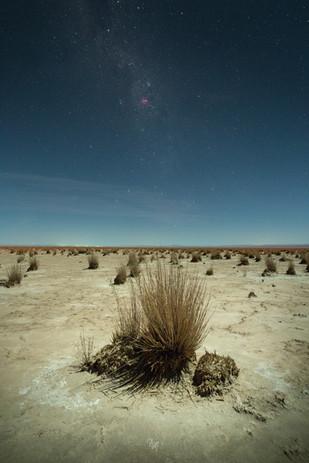 Atacama desert under 78% moon II
