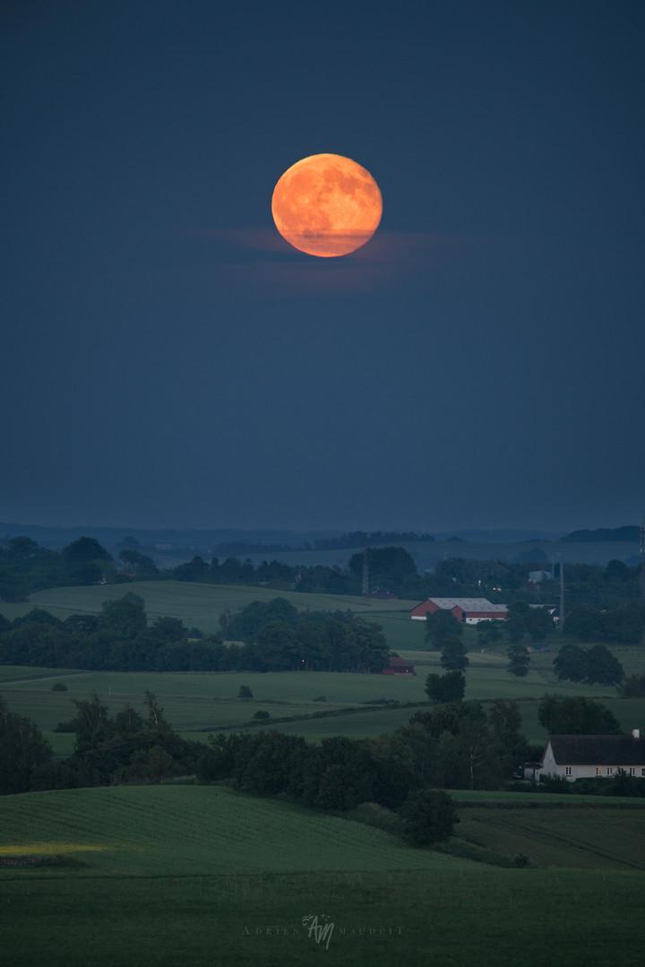 Hunter's moon rising over Denmark