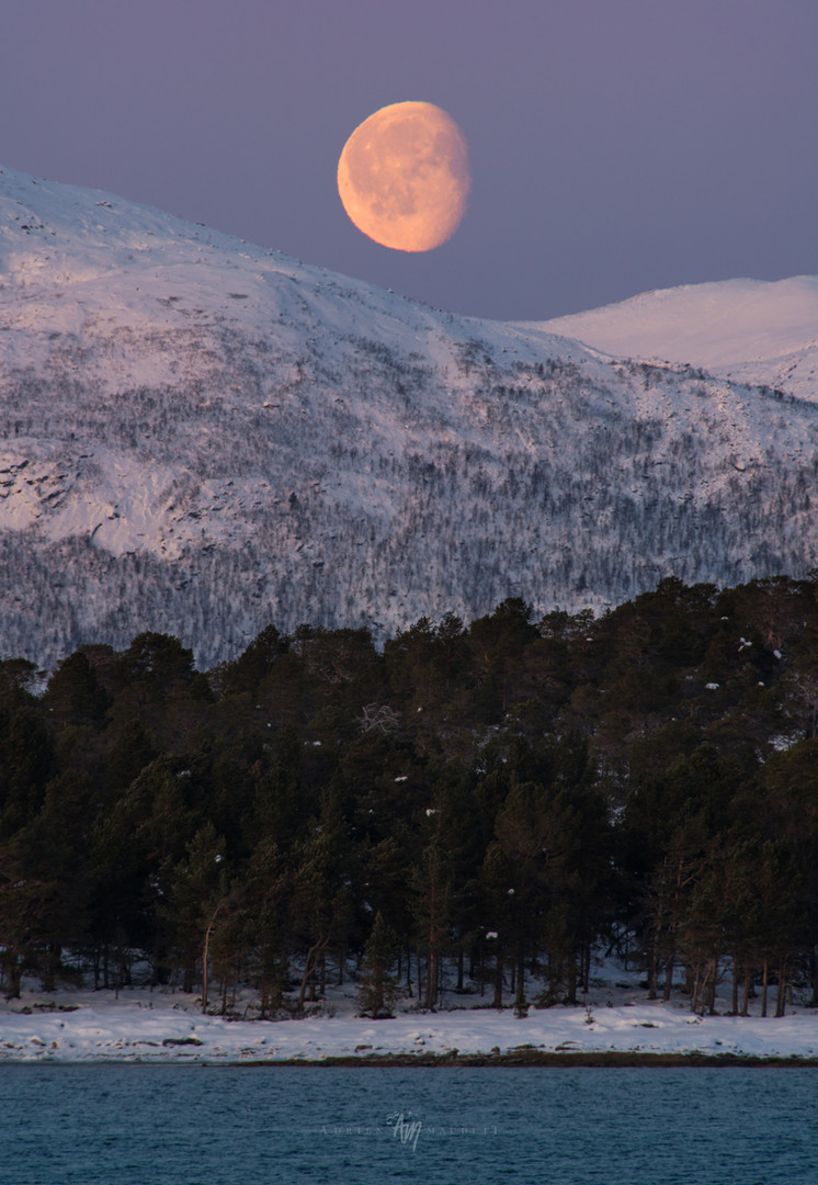 Waning moon over Arctic landscape