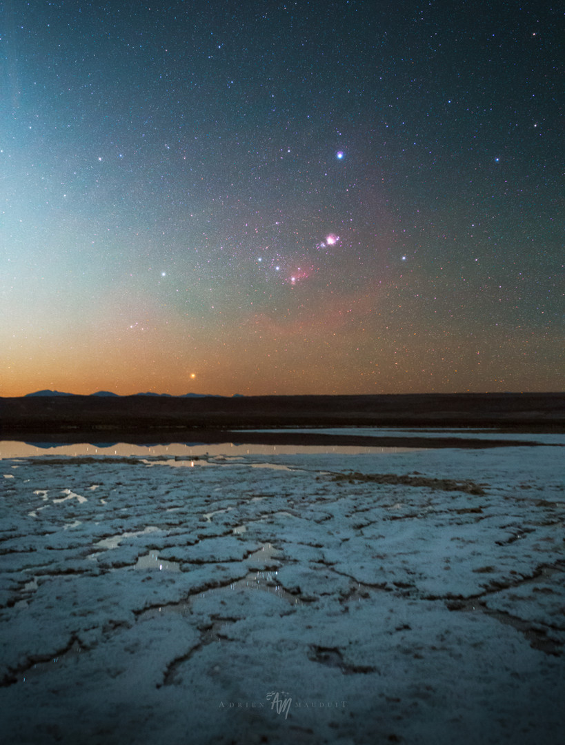 Orion over Salars