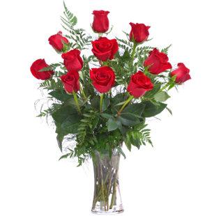 Roses Long Stem