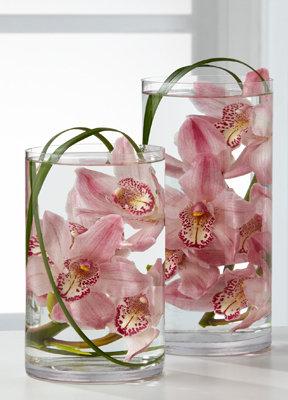 Arrangements Orchids 4018